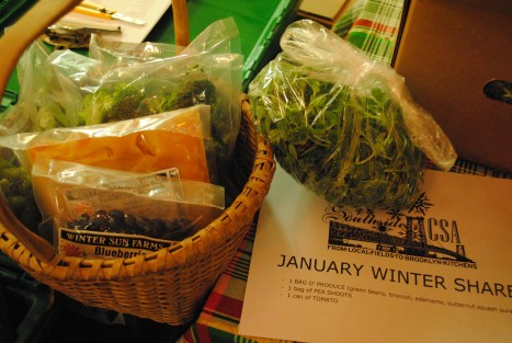 Jan 2013 Winter SHare