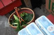 Vegetable Share