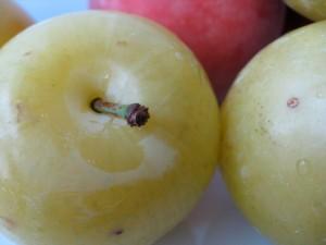 plums & peaches