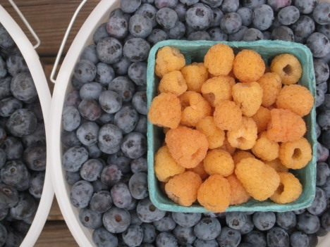 Blueberries & Yellow Raspberries