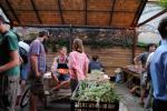 talking rooftop gardens