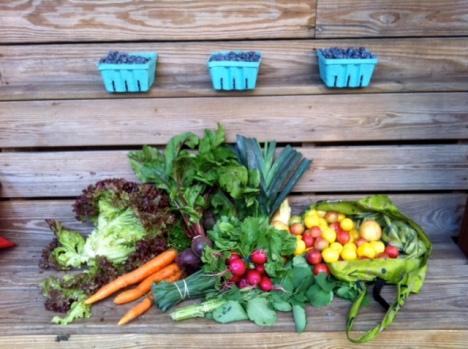 Harvest Aug 2012