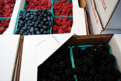 Greig Farm Share (aka Berry Share)