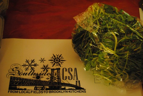 greenhouse greens for winter nomming