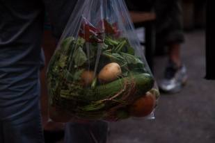 Bag o Veg pick by CSA Volunteer