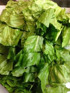 3b salad prep