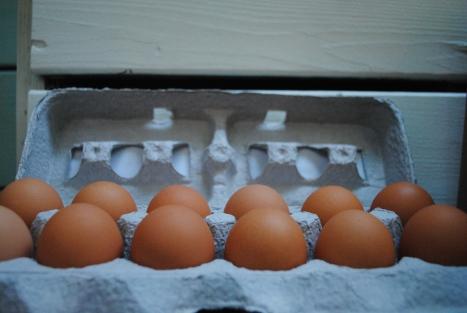 Egg May 2015