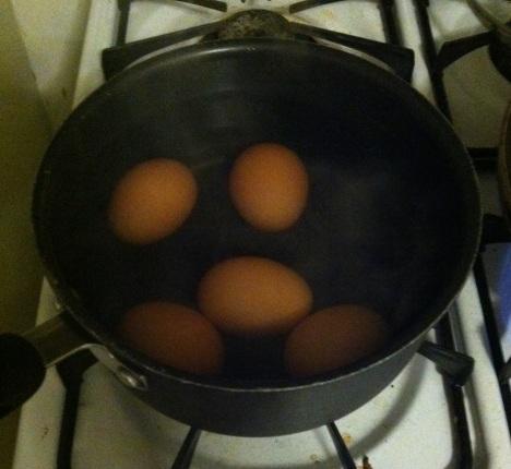 Egg photo 6